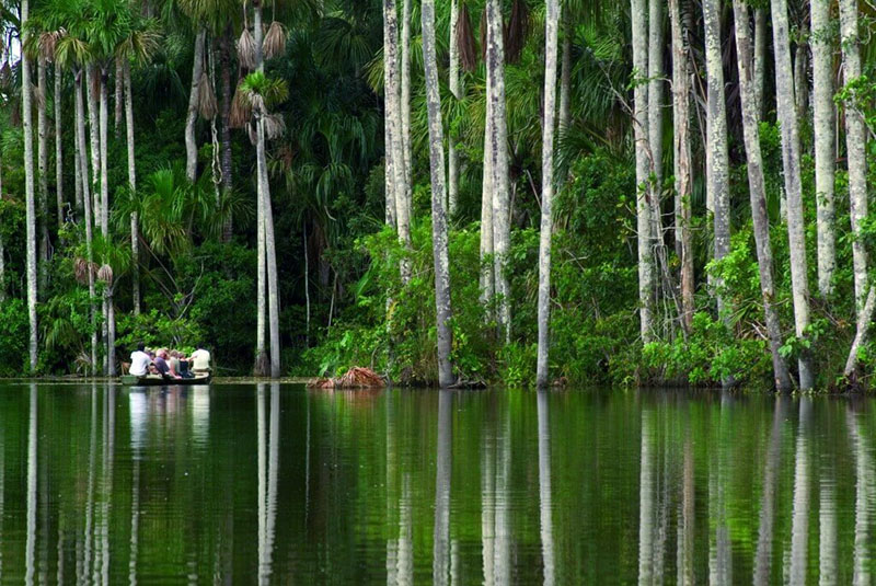 Exploring the Amazon Inkaterra Reserva Amazonica