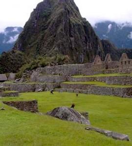 Insiders Machu Picchu