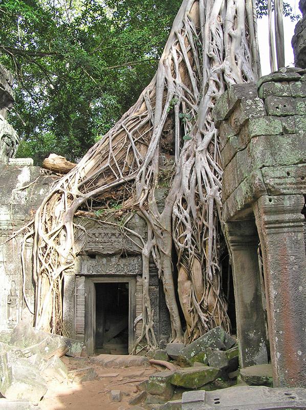 Traveling Angkor