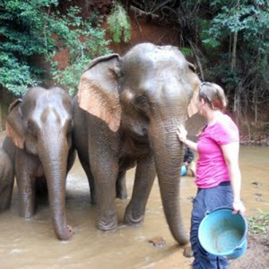 Elephant Camp travel Cambodia