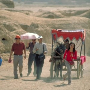travel china donkey cart silk road