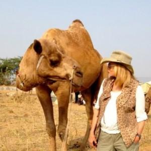 india camel festival