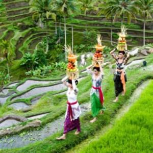 Indonesia_Bali_Ricefieldfestival_V_DA
