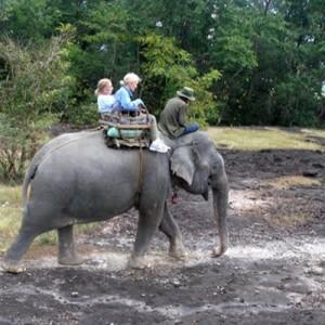 Laos_ApaMountain_ElephantRide_H