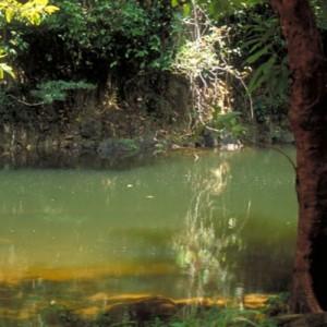 thailand phuket khao suk river
