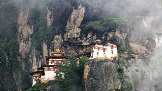 tigers nest in Bhutan