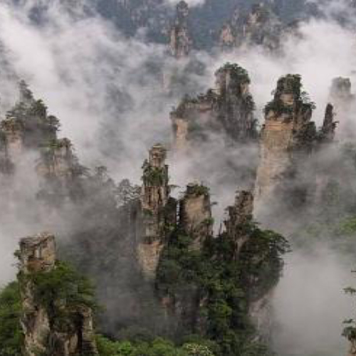 Secret trip to china