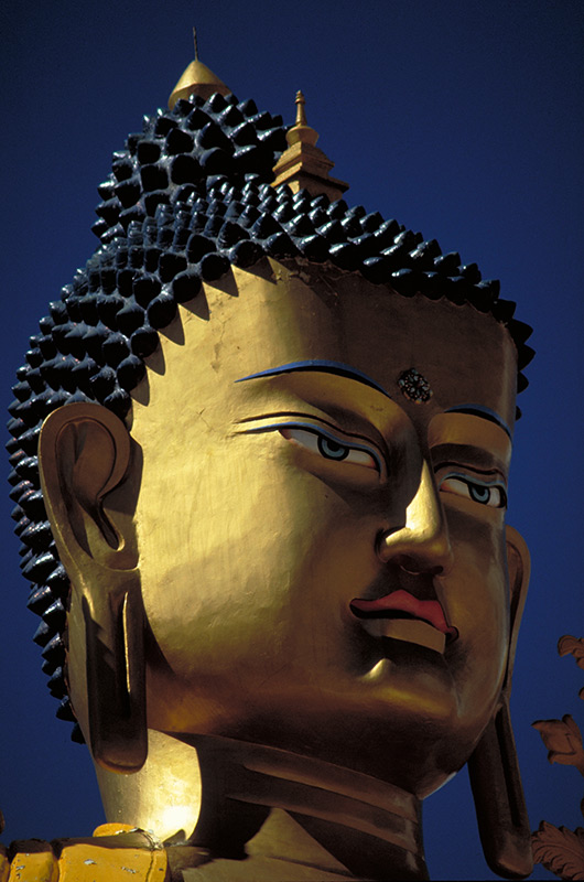 Likir Buddha in Ladakh, India